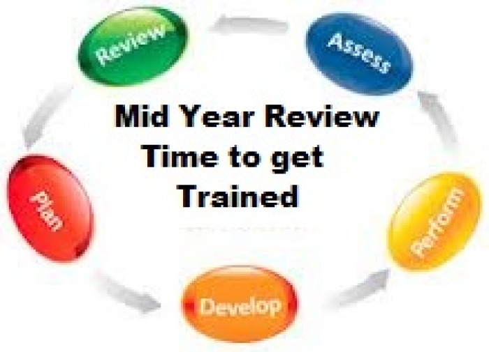 iEdge Consulting - Mid Year Review Time - Check the Pulse